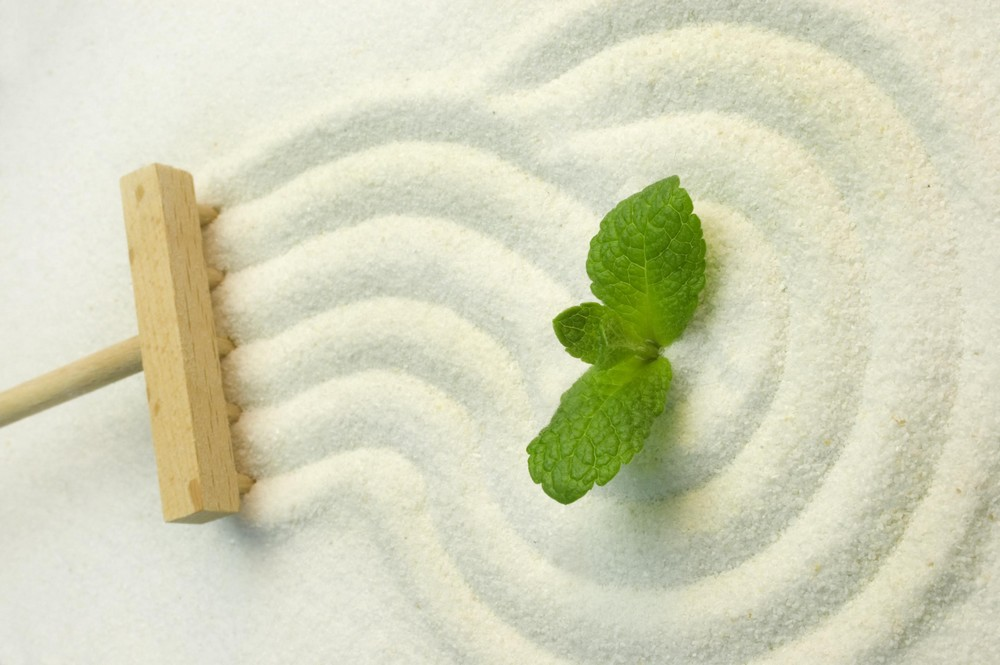 Green leaf on raked white sand of a zen garden