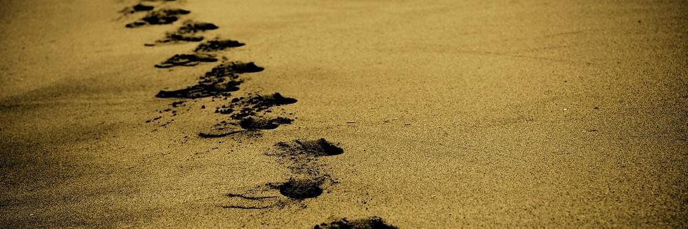 Traces sable PF